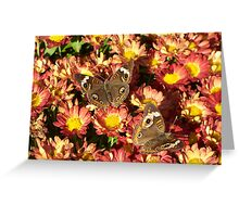 Autumn Wings 2 Greeting Card