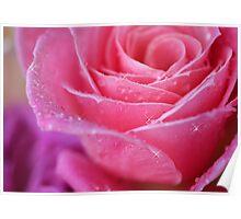 Pink Sparkles Poster