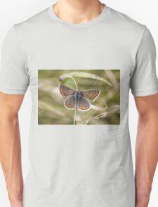 Brown Argus Unisex T-Shirt