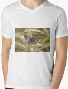 Brown Argus Mens V-Neck T-Shirt