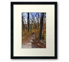 Fabulous fall!! Framed Print