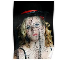 Tangled Behind the Web She Weaves Poster