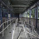 End of the Line by Malik Jayawardena