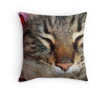 A Sleeping Cat Throw Pillow