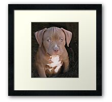 I'm Too Young To Have Wrinkles Framed Print