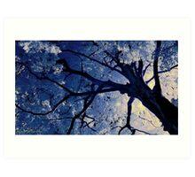 Infrared Tree Art Print