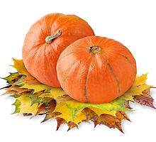 Two pumpkins on autumn leaves by 6hands