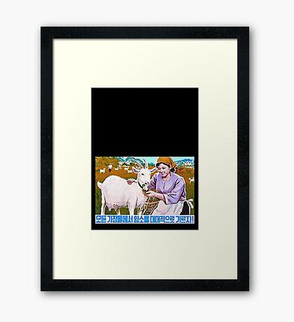 North Korean Propaganda - Goat Framed Print