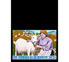 North Korean Propaganda - Goat Photographic Print
