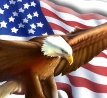 PATRIOT, American, Eagle, Flag, America, Bald Eagle, USA, Bird of Prey, War Sticker