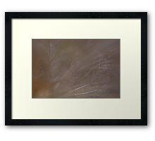 Macro View Of Weeds Framed Print