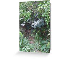 Jungle growth Greeting Card