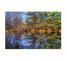 Reflections in a Pool Art Print