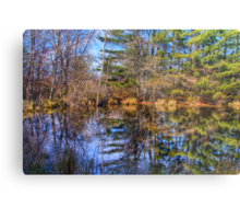Reflections in a Pool Metal Print