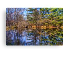 Reflections in a Pool Canvas Print