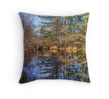 Reflections in a Pool Throw Pillow
