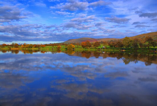 Mirror Image Of The Carp Lake by Sandra Cockayne