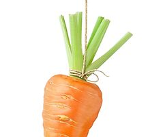 Carrot on a string by 6hands