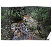 Sandstone Creek Bed Popes Glen Poster