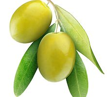 Brach with two green olives by 6hands