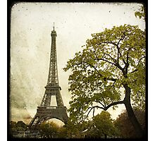 Autumnal Paris Photographic Print