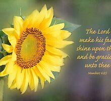 Sunflower with Bible Verse by Deborah Berry