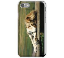 Not Again! Sleeping Lion iPhone Case/Skin
