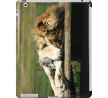 Not Again! Sleeping Lion iPad Case/Skin