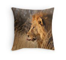 Contemplating Dinner, Etosha National Park Throw Pillow