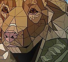Nova Scotia Geometric by rosexxdragon