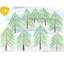 fir trees - oil pastels Photographic Print