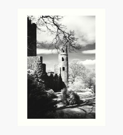 Blarney Castle, Ireland Black and White Art Print