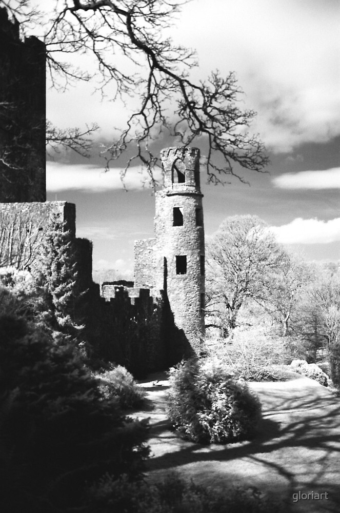 Blarney Castle, Ireland Black and White by gloriart