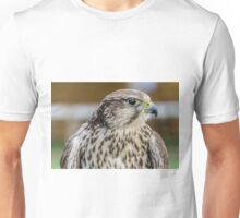 Bird of prey - Kestrel Unisex T-Shirt