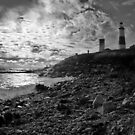 The Montauk Lighthouse by laurie13