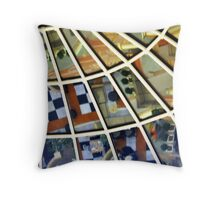 The Proverbial Glass Ceiling  Throw Pillow