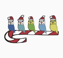 Budgies- Christmas by parakeetart