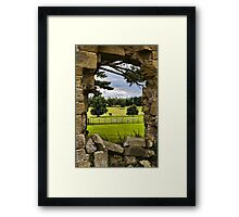 The View Beyond Framed Print