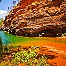 Hamersley Gorge by Jan Fijolek
