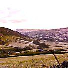 Looking Towards Muker - Yorkshire Dales by Trevor Kersley