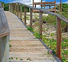 Follow Me To Paradise by Carol Barona