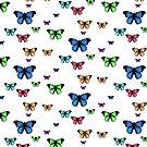 rainbow butterflies by BlaizerB