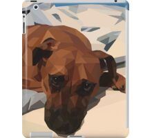 Rudy - Polygon Dog iPad Case/Skin