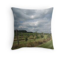 Stormclouds over the Orchard Throw Pillow