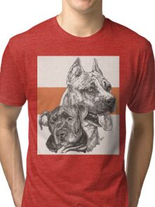 American Staffordshire Terrier, Father & Son Tri-blend T-Shirt