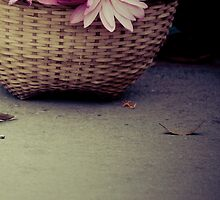 pretty offerings- morning alms, Luang Prabang, Laos by Andrianne