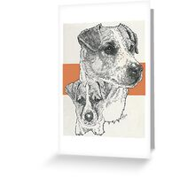 Jack Russell, smooth coat, Father & Son Greeting Card
