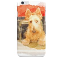 Whos That Dog In The Window? iPhone Case/Skin