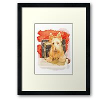 Whos That Dog In The Window? Framed Print