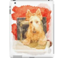 Whos That Dog In The Window? iPad Case/Skin